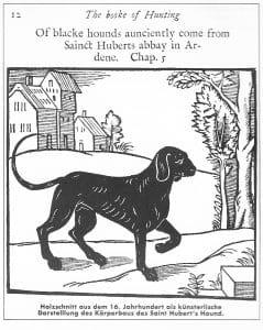 Quelle: Wolters, Der Labrador Retriever, Turhout 1993, S. 30  eschichte und Geschichten - Viele Theorien ranken sich um die Entstehung des Labrador Retrievers. Sie sind so fantasievoll wie unsicher.