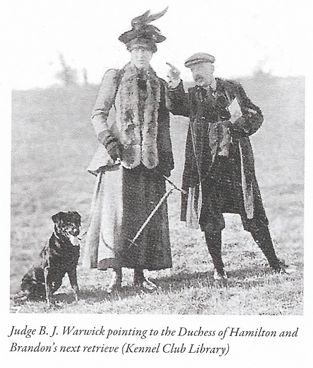 Ladies' Power In Labradors  The Dutchess of Hamilton